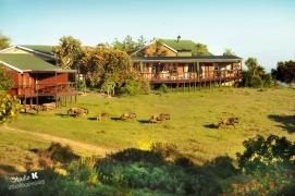 Unique Bushveld Experience